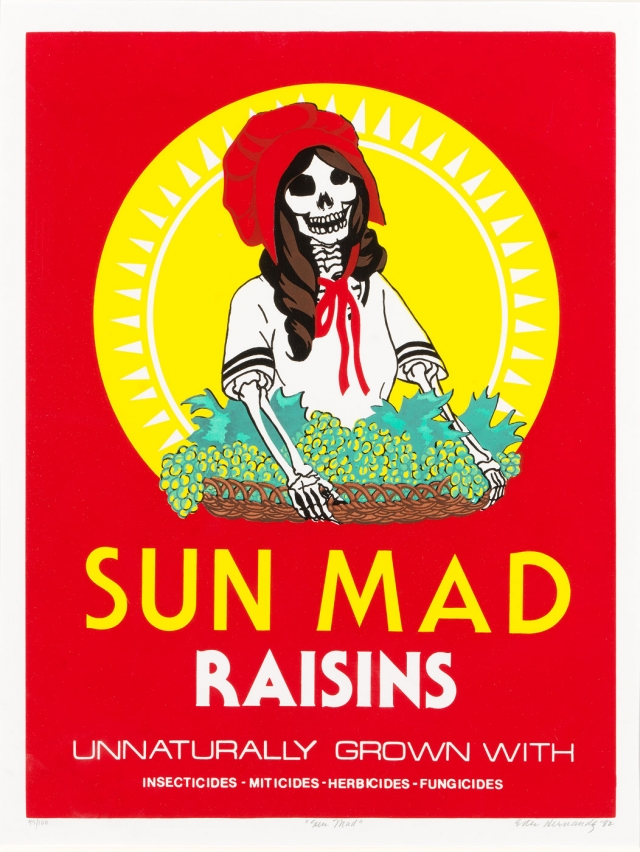 Sun Mad by Ester Hernandez