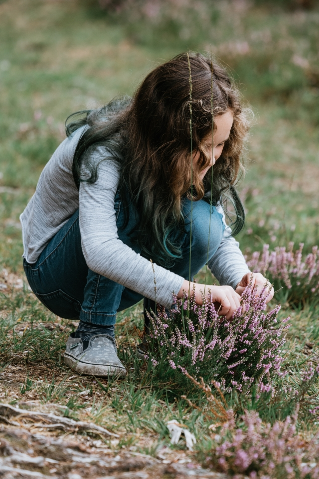 girl looking for bugs in a heather plant